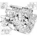 ENGINE - MOTORE XJ6