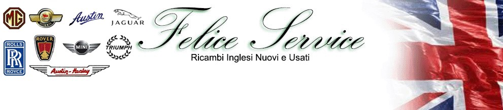 OFFICINA AUTO EPOCA INGLESI RICAMBI AUTO CLASSICHE INGLESI Felice Service